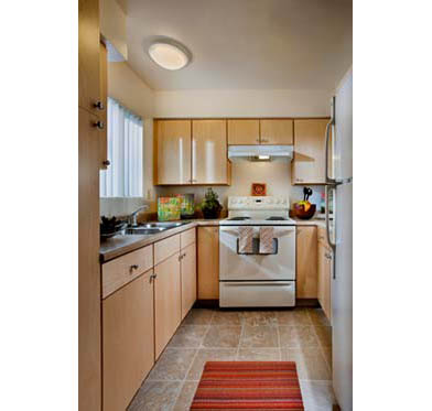 Renovated Unit Kitchen